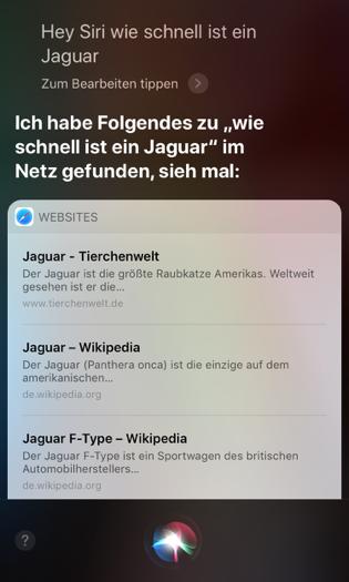 Misslungene CI-Konversation Siri